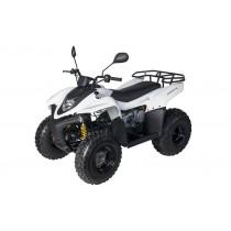 Квадроцикл JAM 100